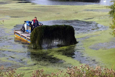 aquatic-plant harvester