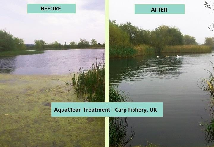 Ultrasonic Algae Control Before and After - monk lakes